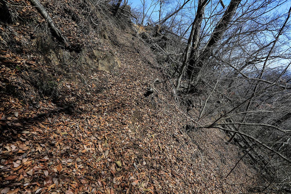 【妙義山】登山百景-東側へ巻く