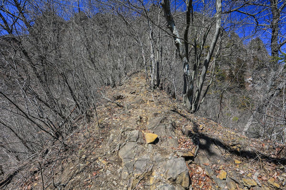 【妙義山】登山百景-石の尾根を登る