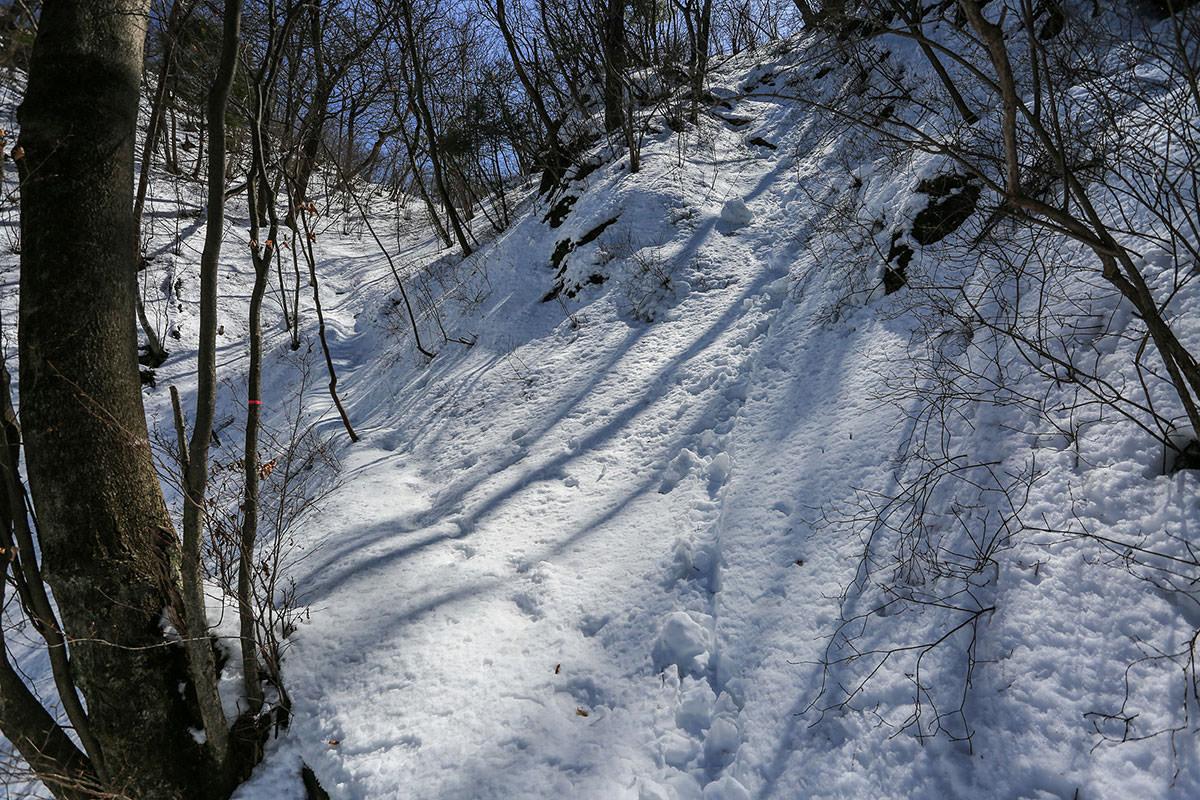 【妙義山】登山百景-けっこう雪
