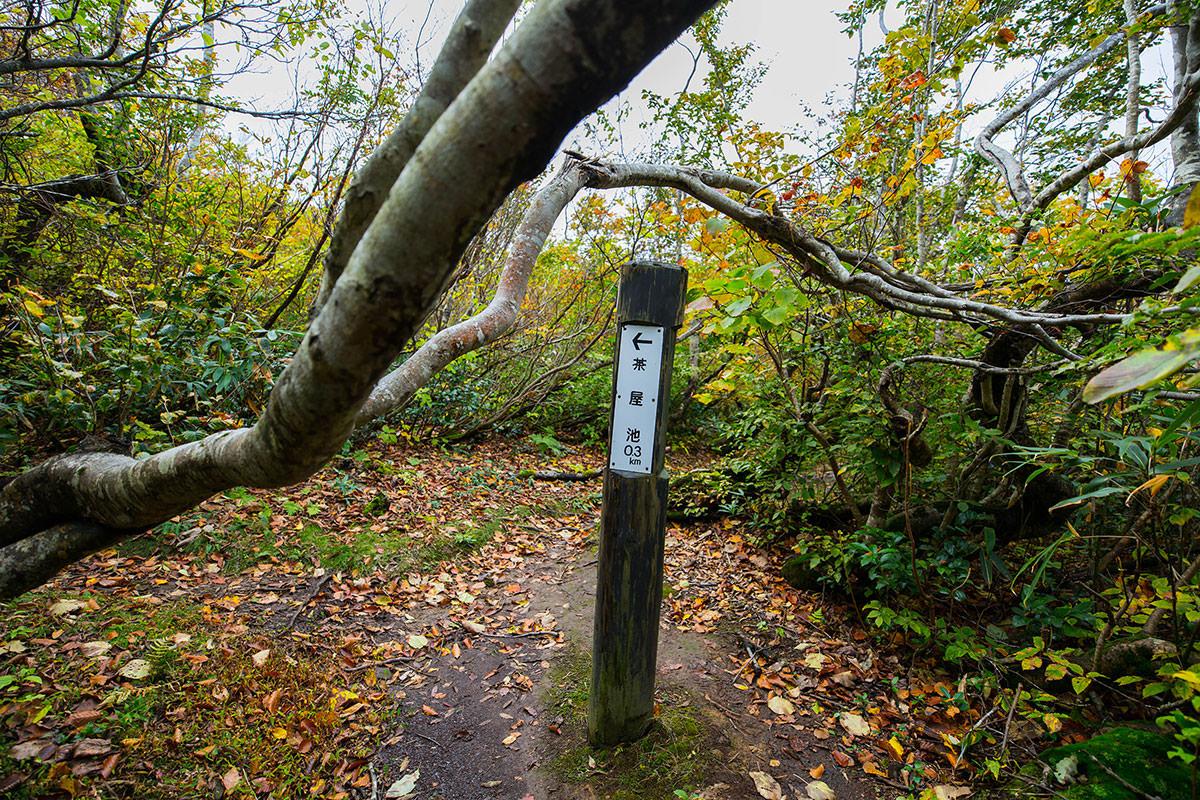 【鍋倉山】登山百景-茶屋池との分岐