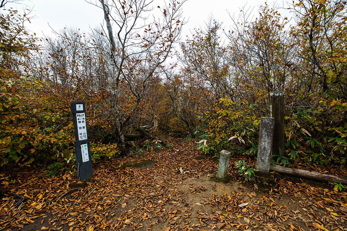 【鍋倉山】登山百景-通過して鍋倉山へ