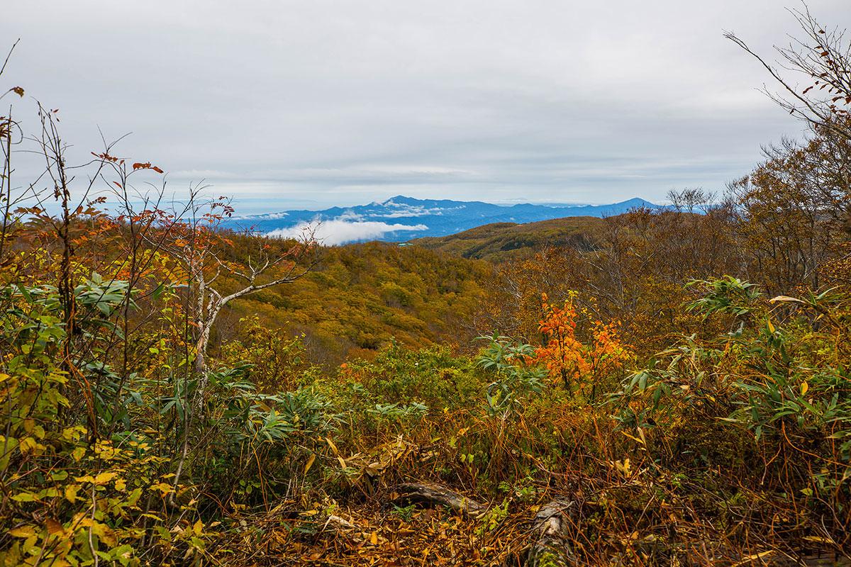 【鍋倉山】登山百景-光高原方面が見える