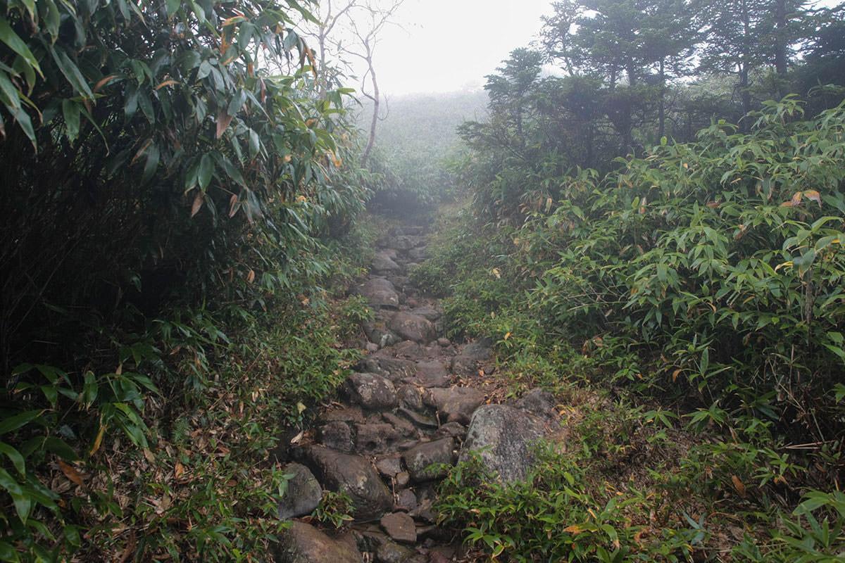 【苗場山】登山百景-開けた雰囲気