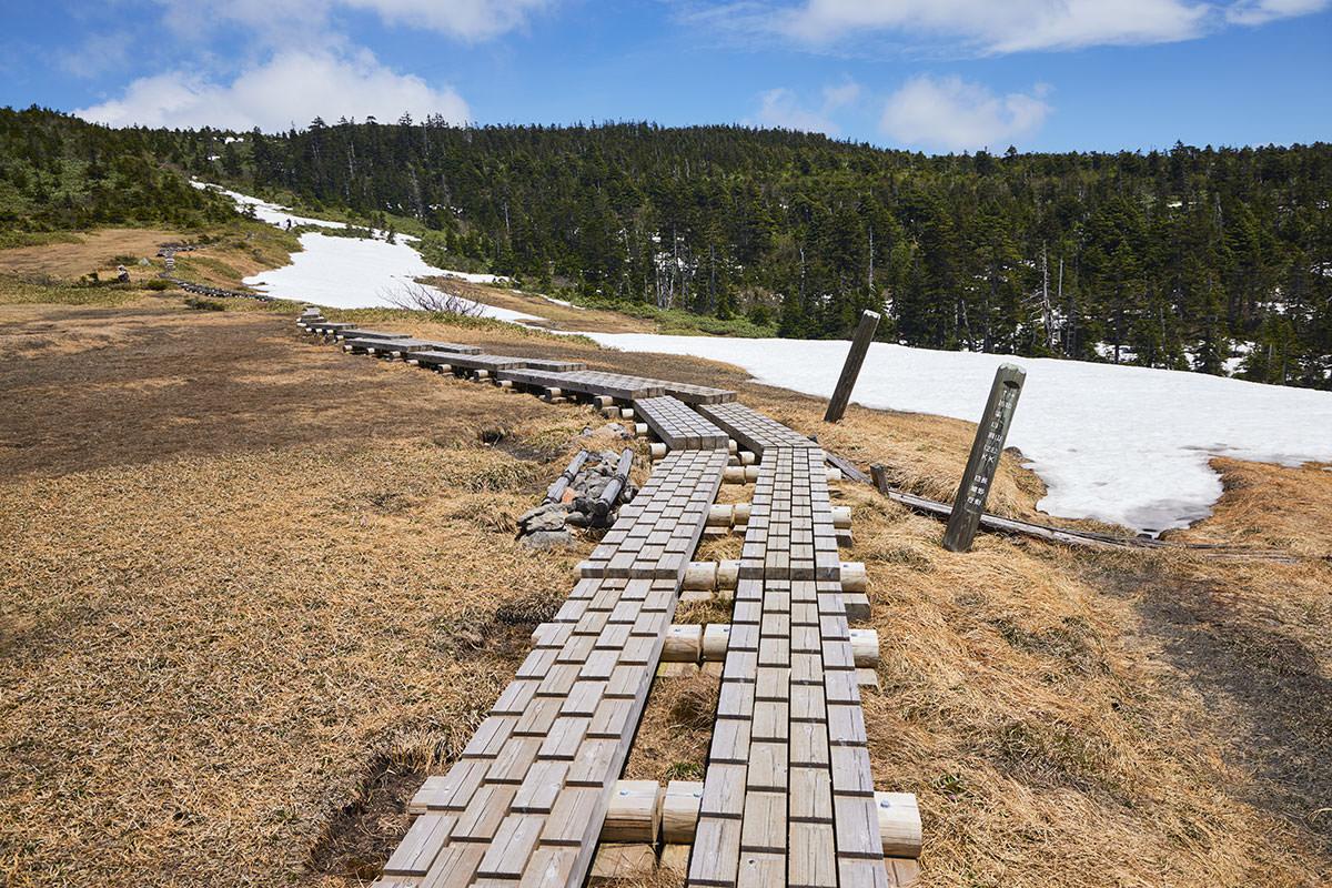 苗場山-和山からの登山道と合流