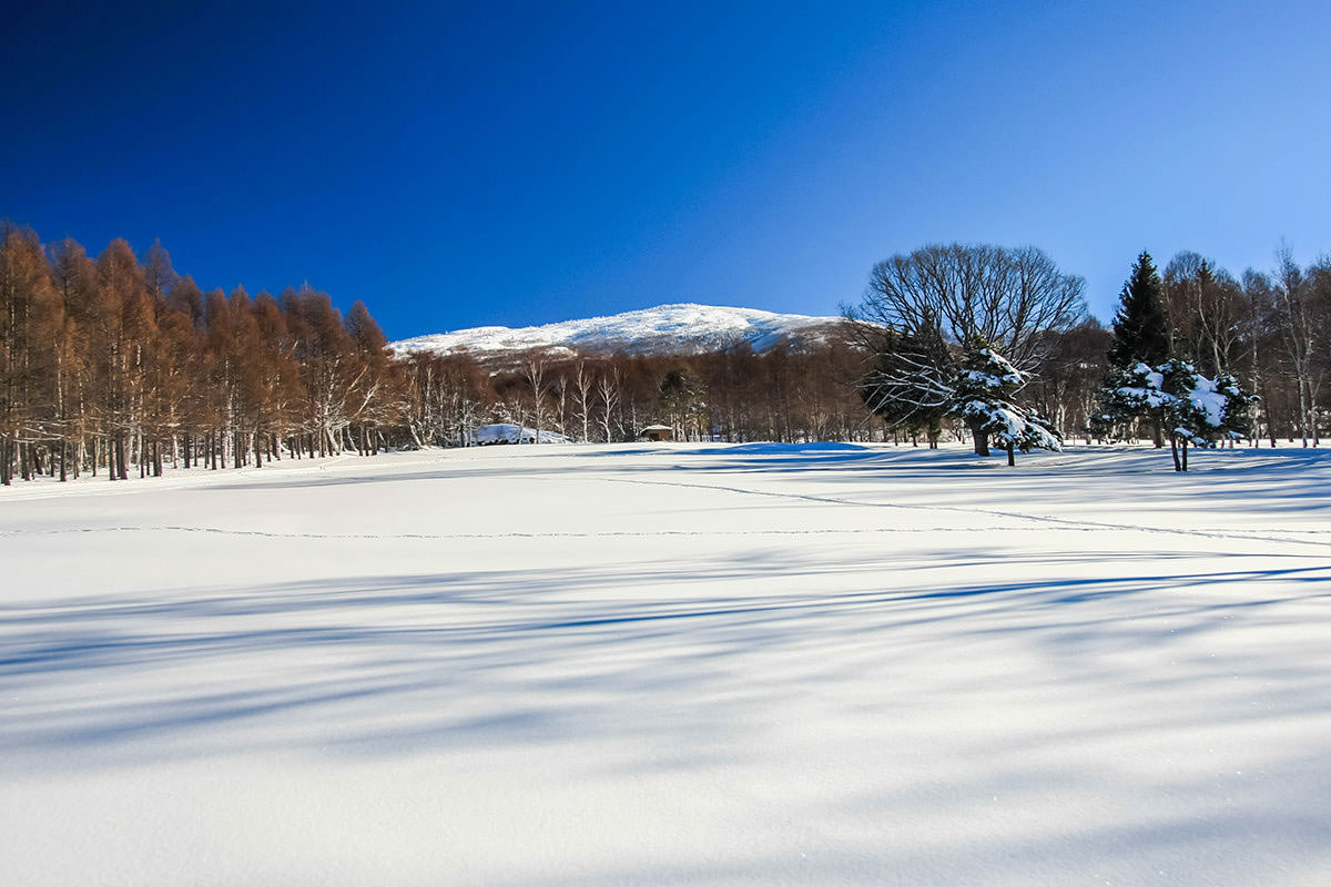 【根子岳 峰の原高原コース】登山百景-スノーシューで雪の中へ