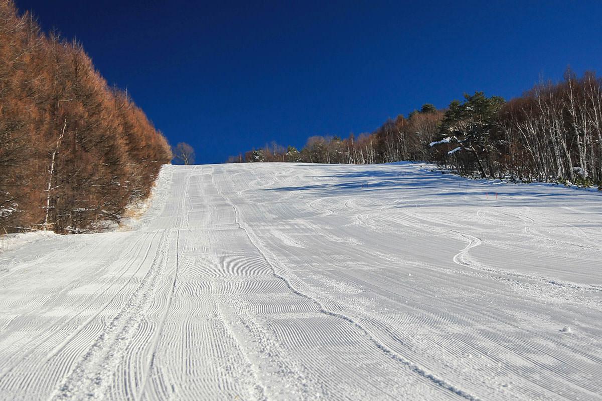 【根子岳 峰の原高原コース】登山百景-整地されたゲレンデ