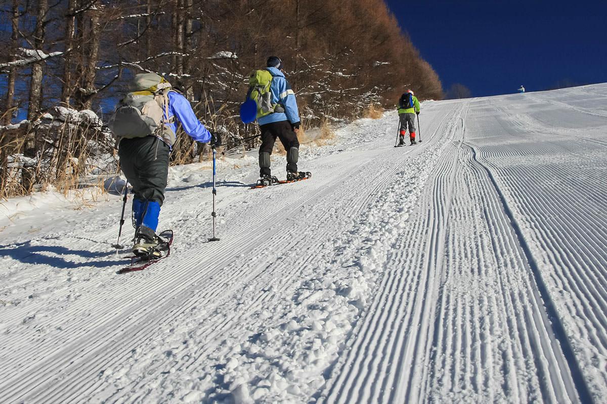【根子岳 峰の原高原コース】登山百景-スノーシューで登る