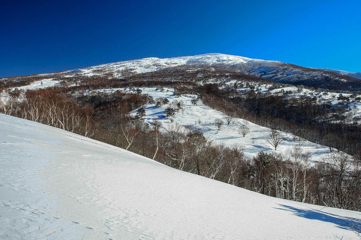 【根子岳 峰の原高原コース】登山百景-あの先っぽへ行く