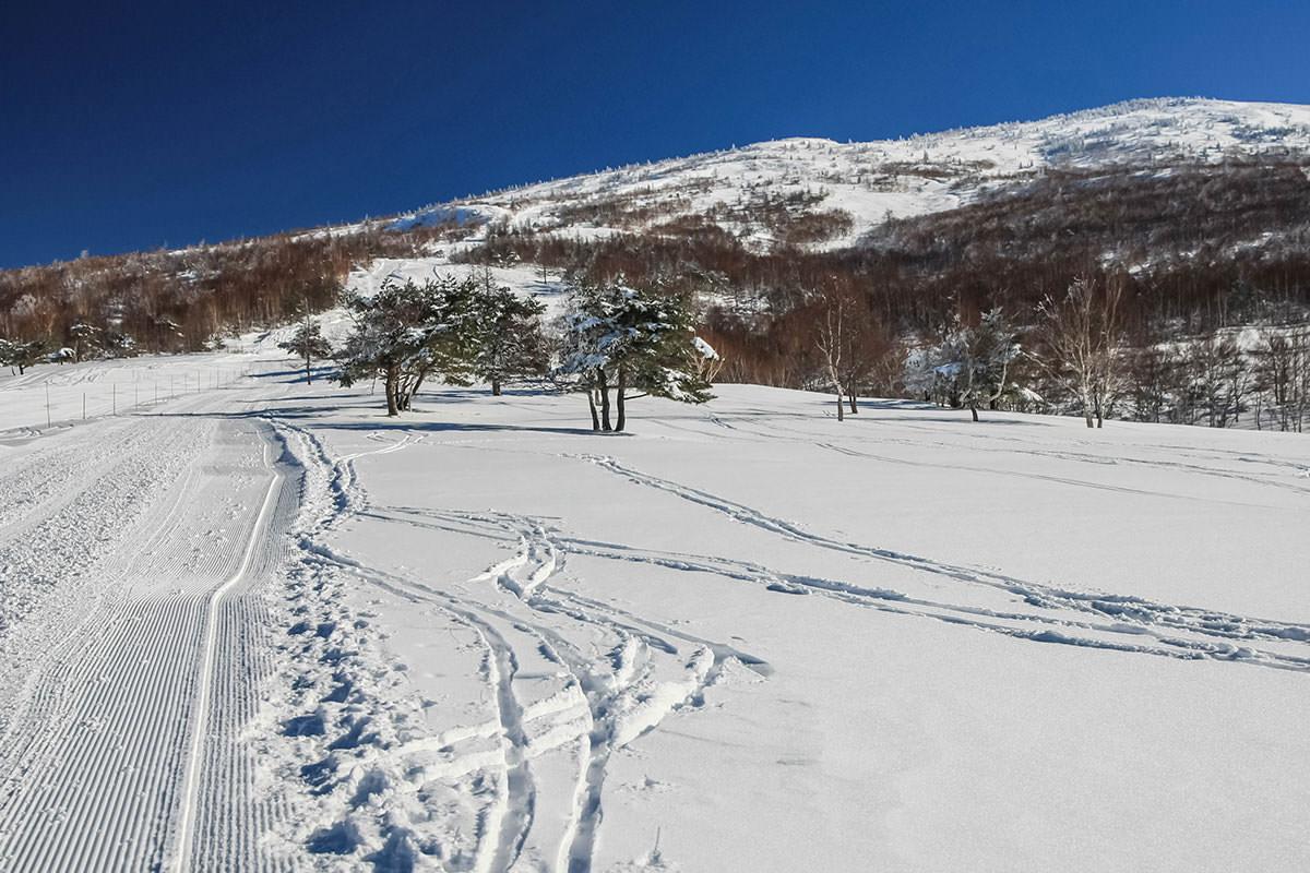 【根子岳 峰の原高原コース】登山百景-さらに登る