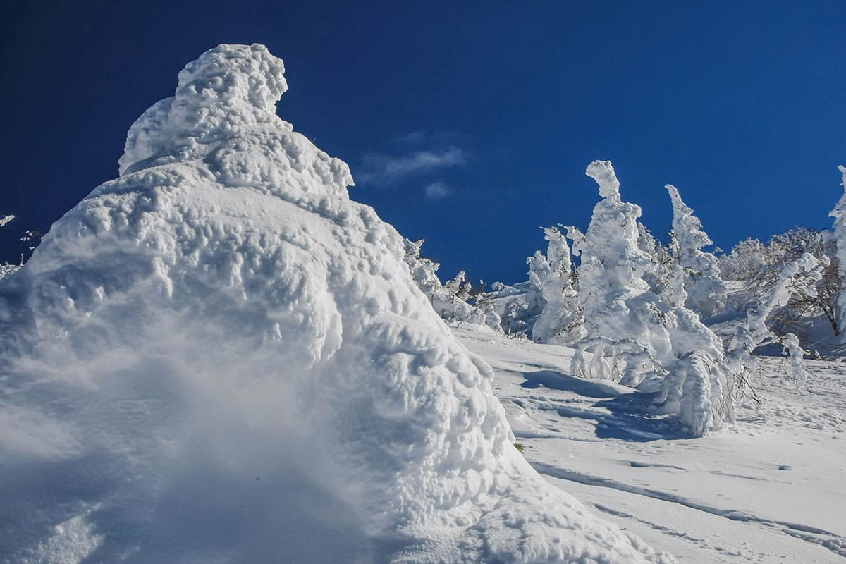 【根子岳 峰の原高原コース】登山百景-間近で眺められる