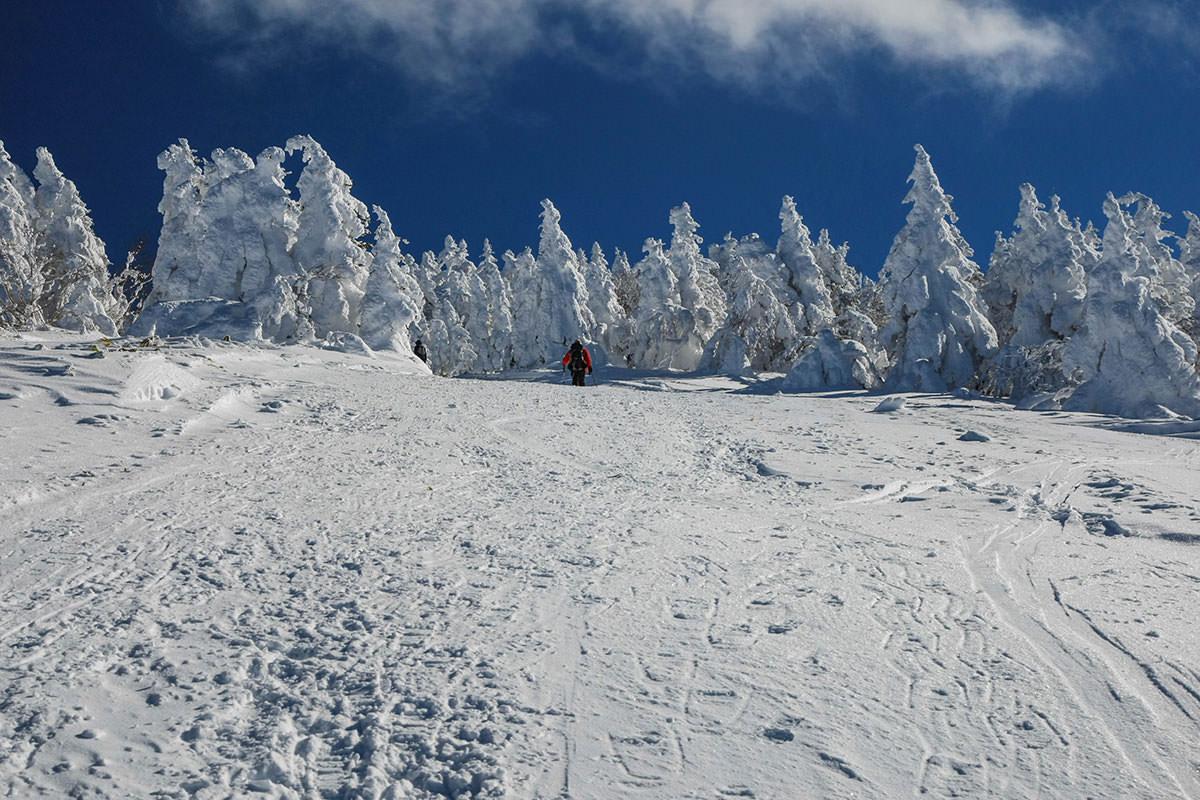 【根子岳 峰の原高原コース】登山百景-樹氷の中を行く
