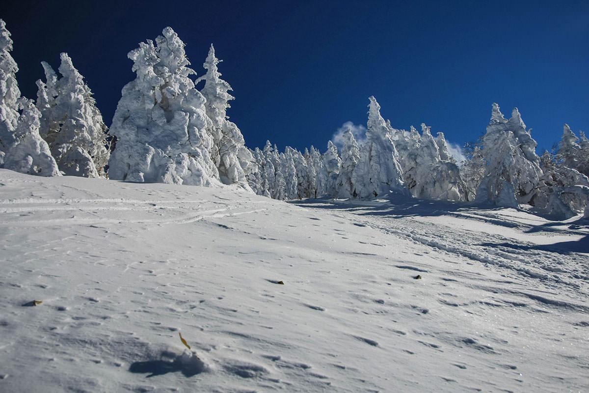 【根子岳 峰の原高原コース】登山百景-風をよけるために樹氷の影へ