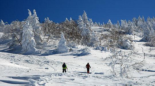 根子岳 峰の原高原コース