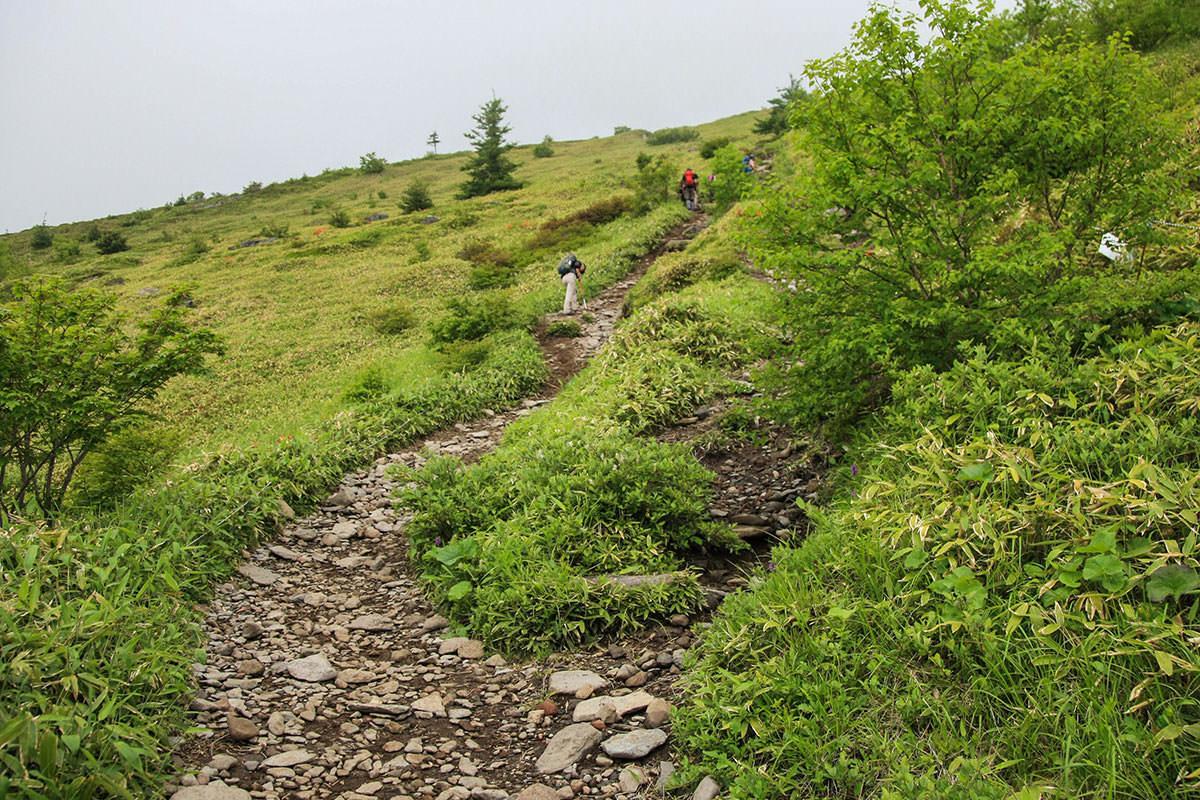 【根子岳】登山百景-ここから地味に長い