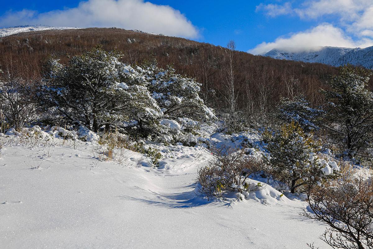 【根子岳 菅平高原】登山百景-雪がフカフカ