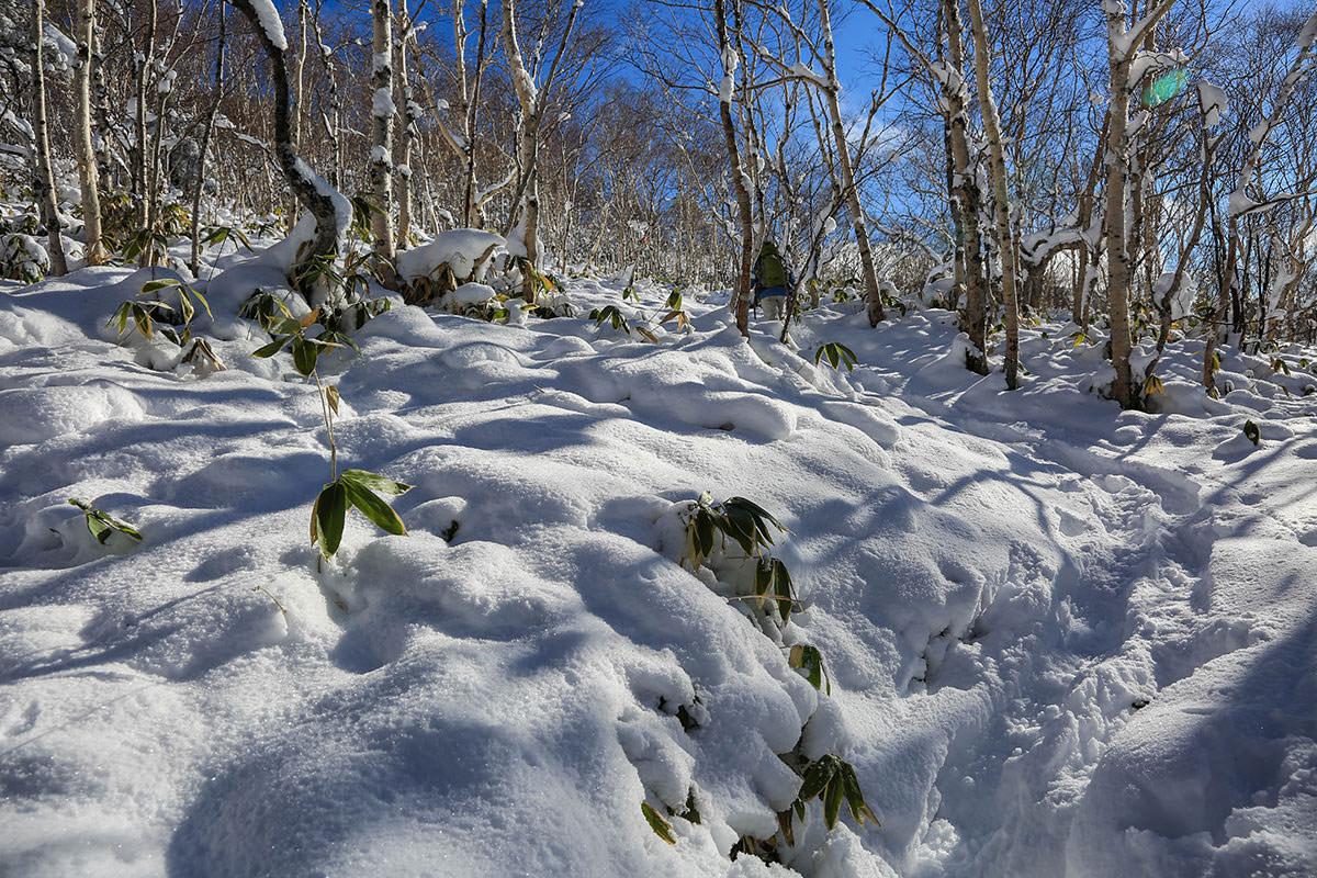 【根子岳 菅平高原】登山百景-青空と雪が綺麗