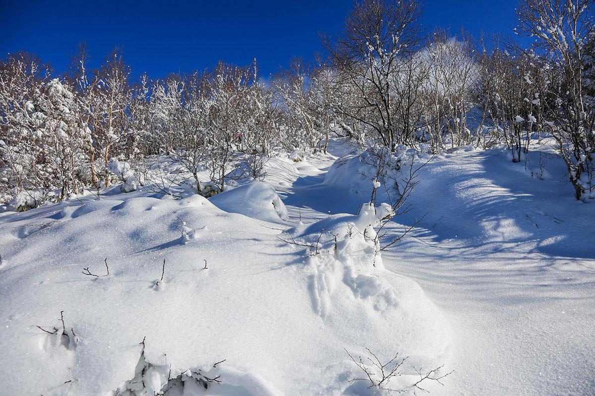 【根子岳 菅平高原】登山百景-ますます雪