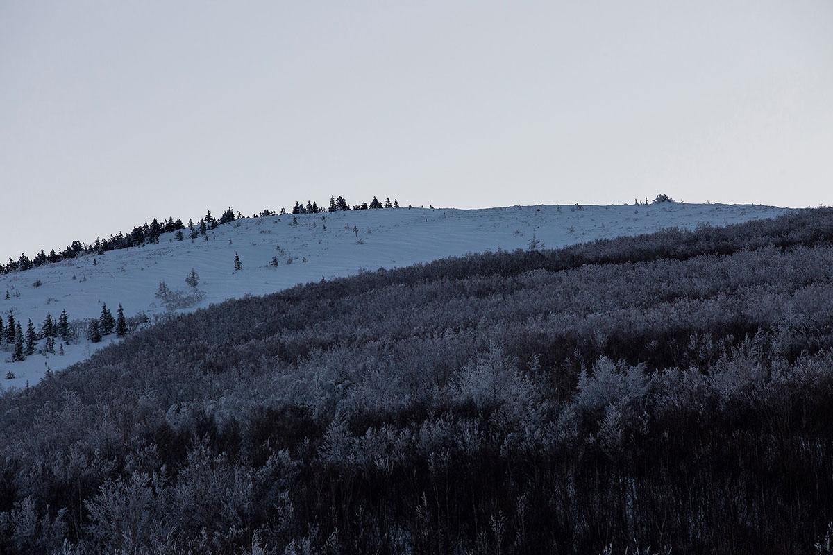 山頂も近いように見える
