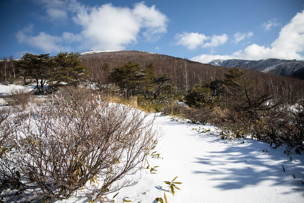 根子岳-本格的な感じの登山道へ入っていく