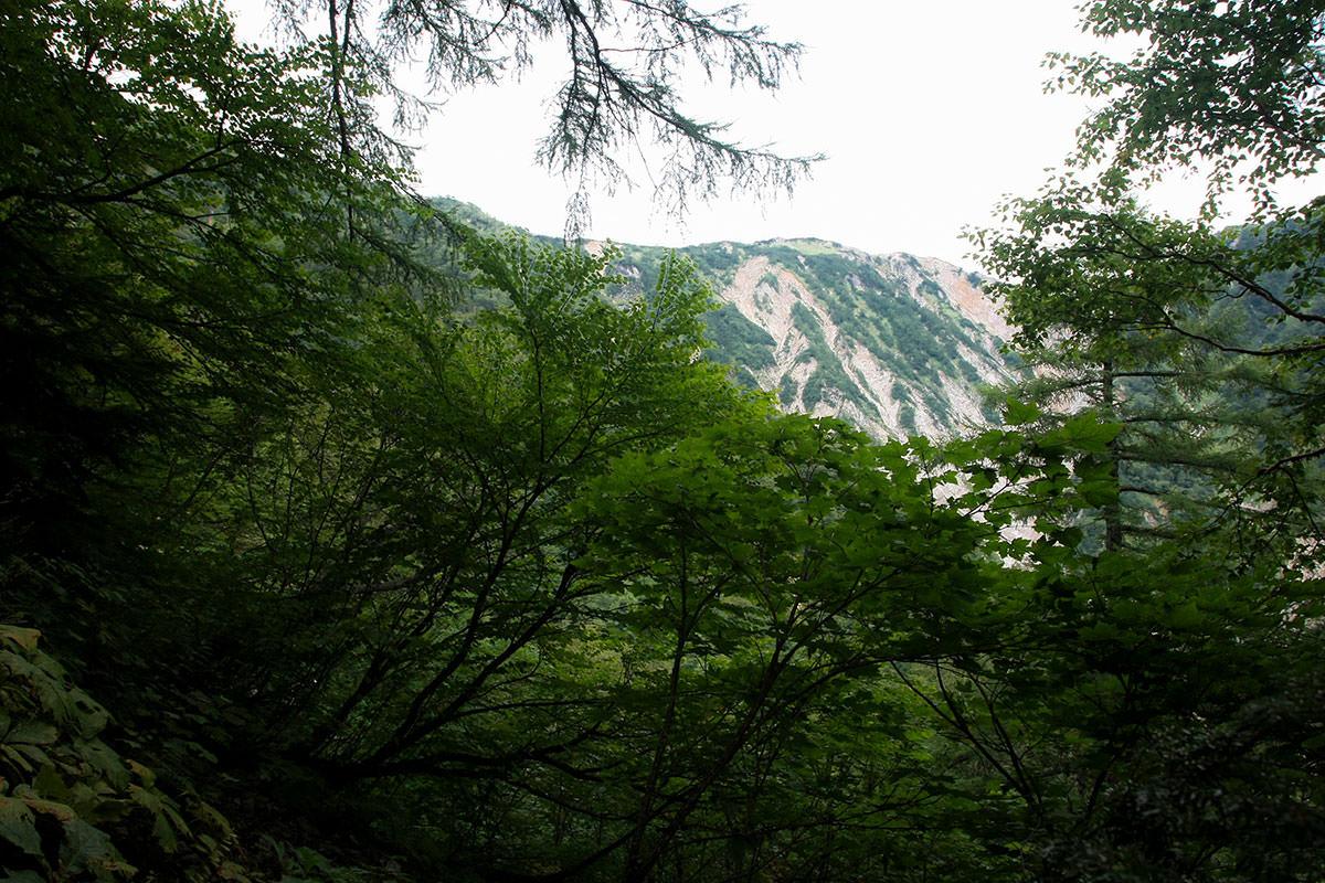 南沢岳の方