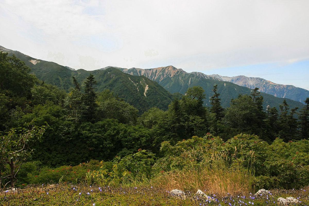 赤牛岳の稜線