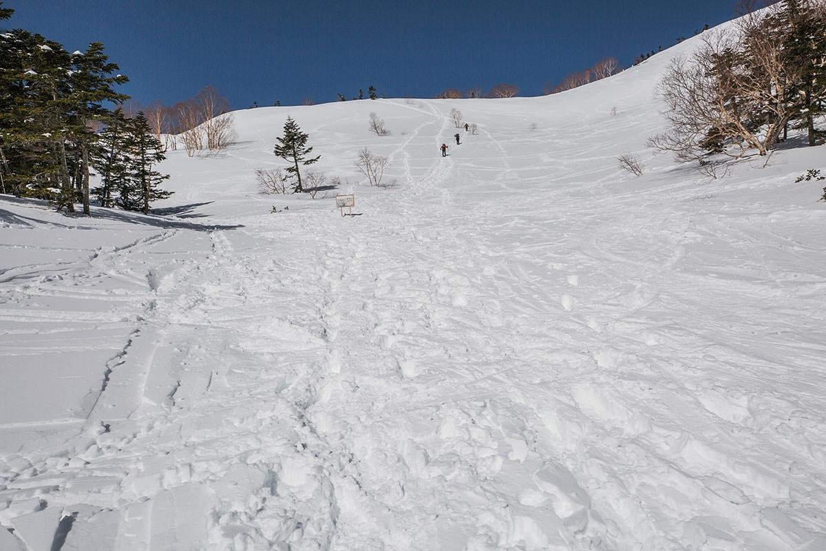 【乗鞍岳 Mt.乗鞍スノーリゾート】登山百景-樹林帯の終わり