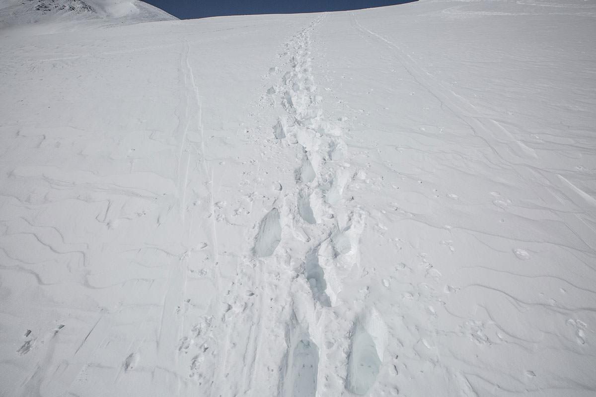 【乗鞍岳 Mt.乗鞍スノーリゾート】登山百景-踏み跡を使わせてもらう