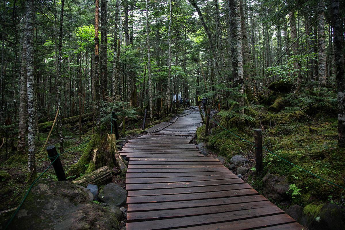 【にゅう】登山百景-歩きやすい遊歩道