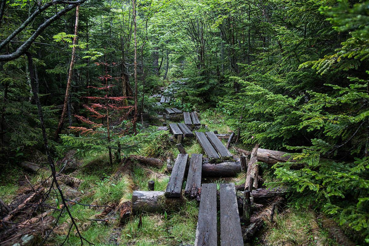 【にゅう】登山百景-木道が右左