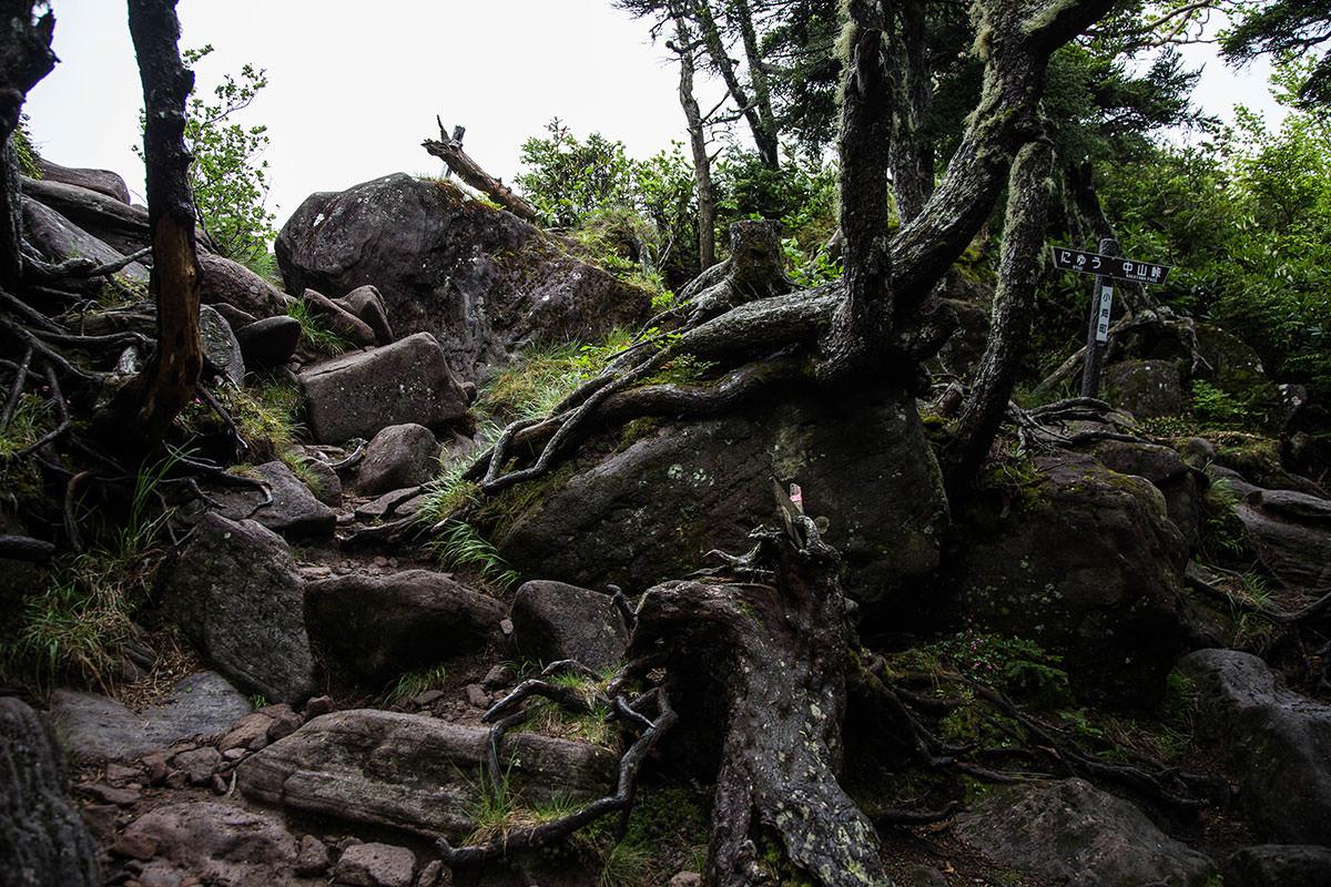 【にゅう】登山百景-最後に登ると開ける