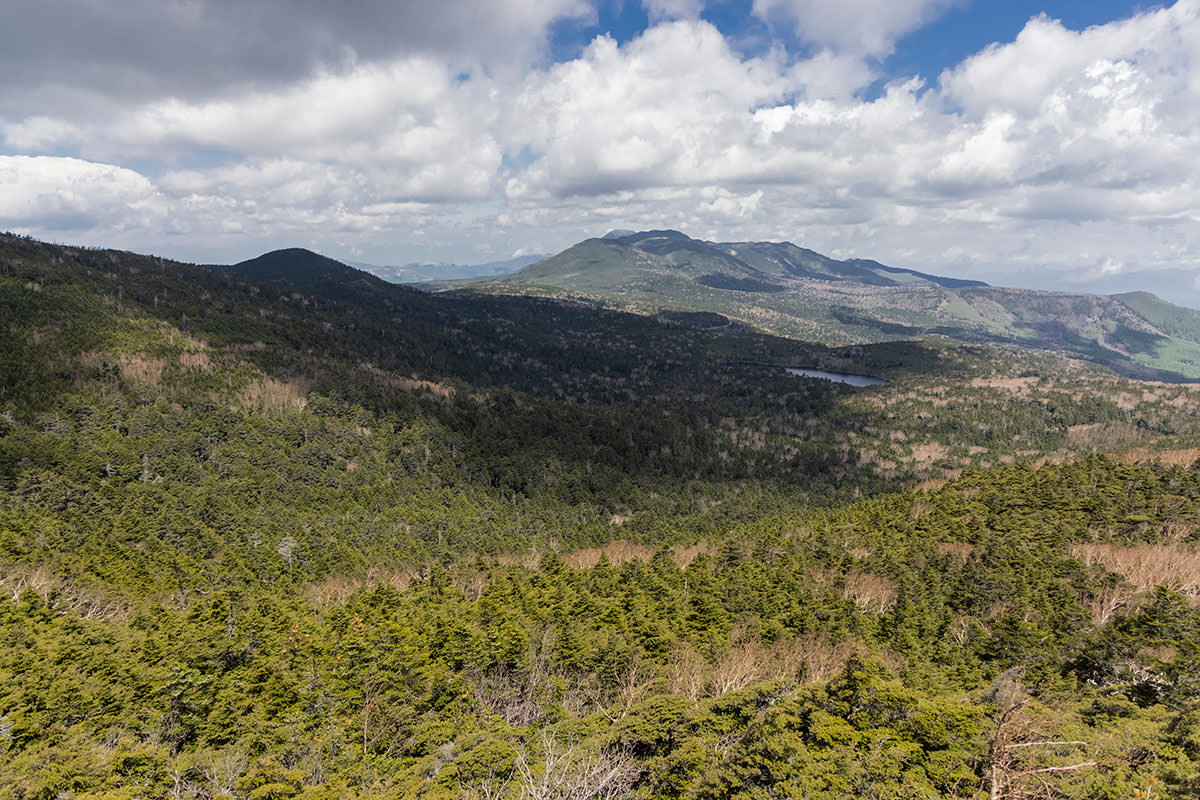 北の方には白駒池や縞枯山