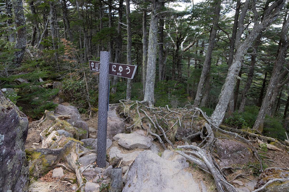 にゅうから中山峠へ
