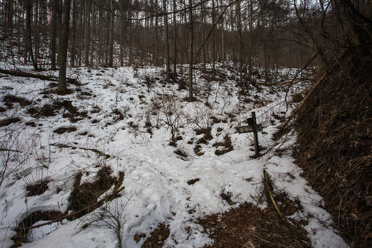 【御座山】登山百景-本格的に雪が