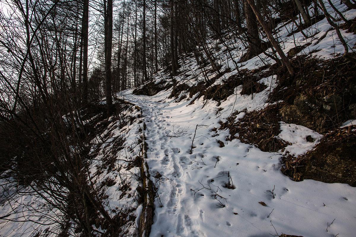 【御座山】登山百景-雪が続く