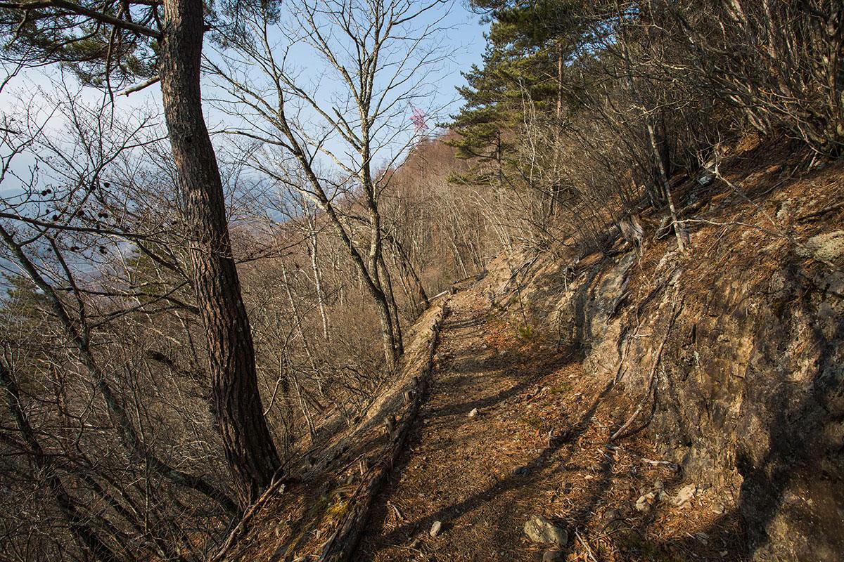 【御座山】登山百景-落ち葉がフカフカ