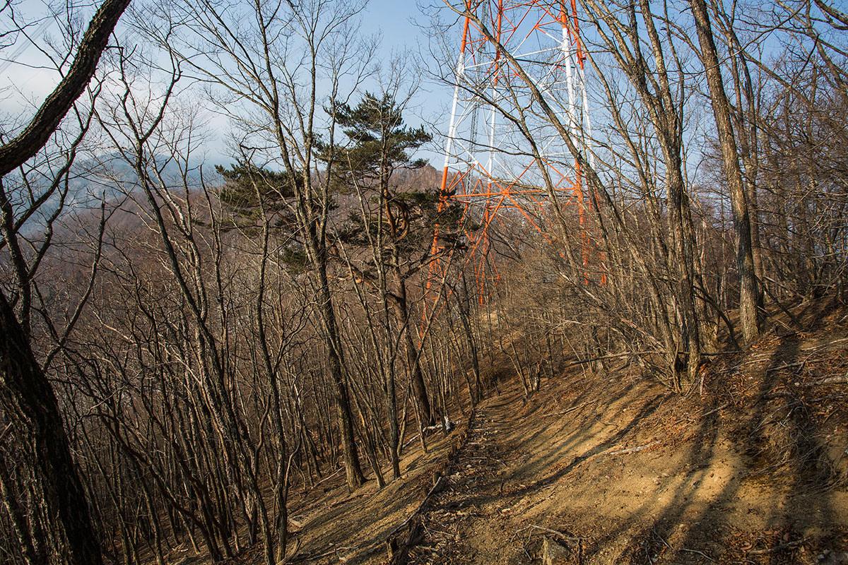 【御座山】登山百景-鉄塔が近づいてきた