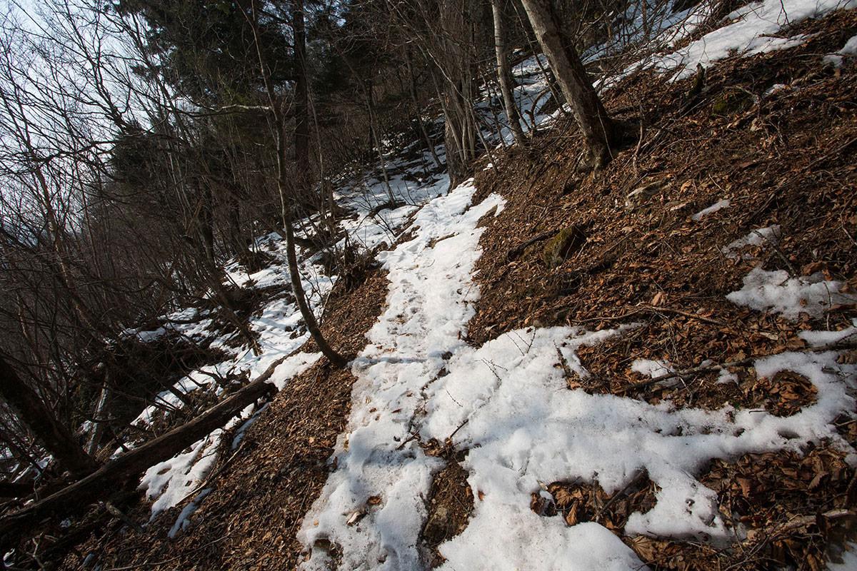 【御座山】登山百景-斜面を横切る
