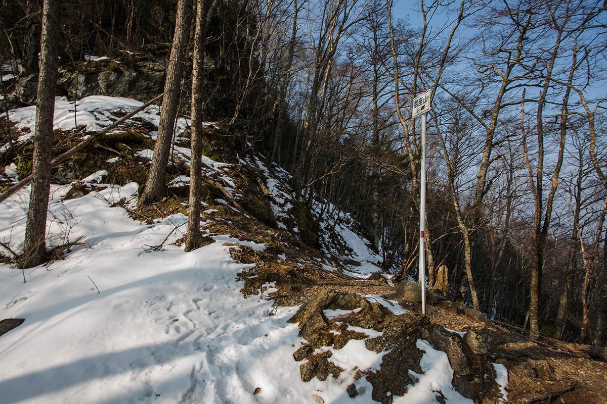 【御座山】登山百景-尾根を跨いで反対側へ