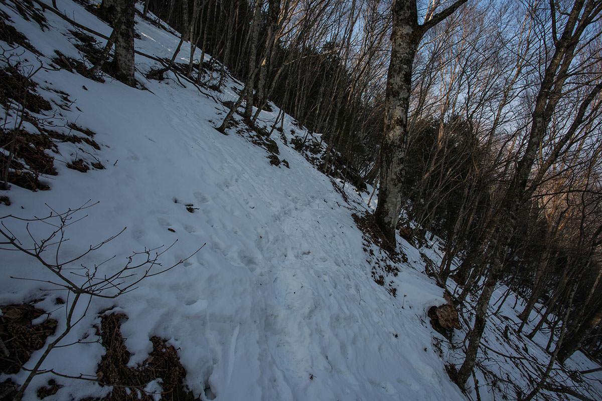 【御座山】登山百景-日影は雪が多い
