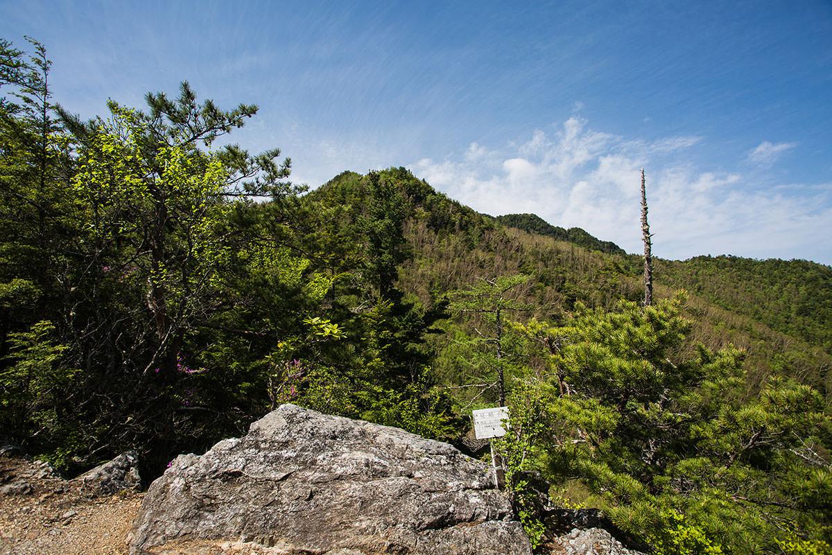 御座山-前衛峰が見える