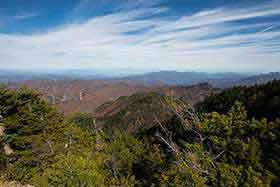 北相木からの登山道方向