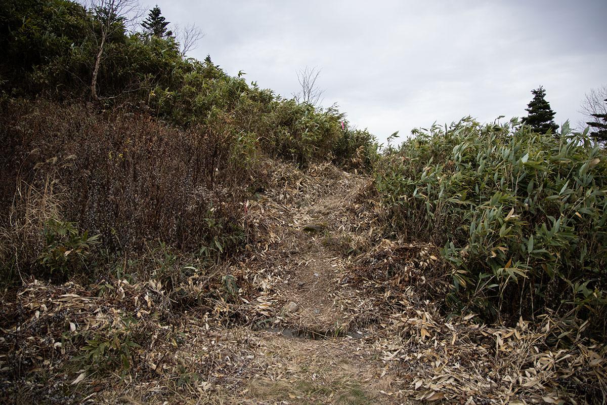 老ノ倉山-登山口を入る