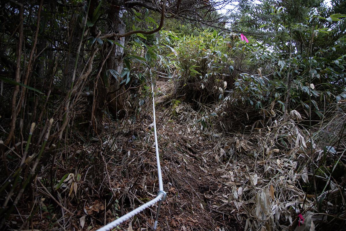 老ノ倉山-いきなり急登だけどロープが張ってある