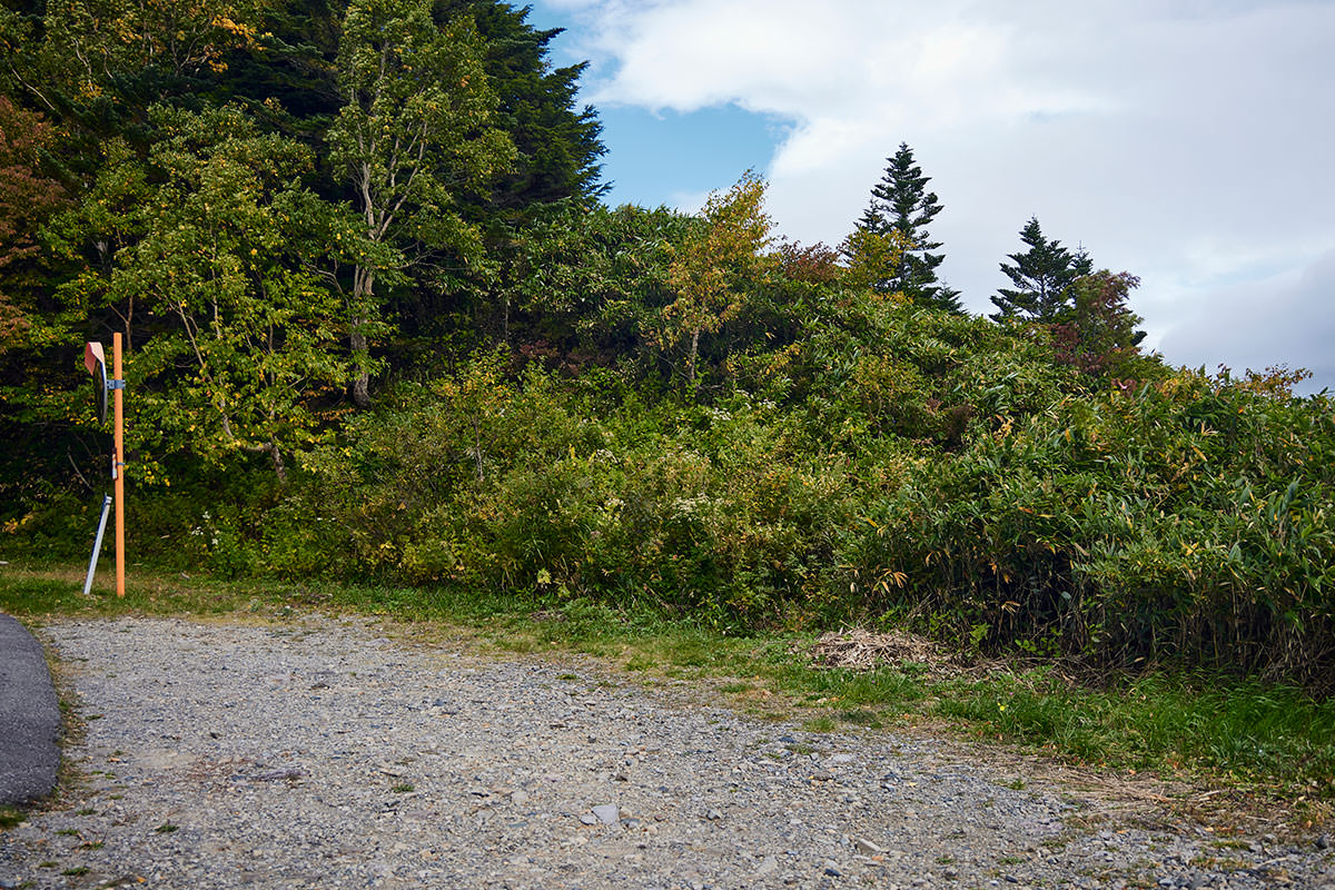 老ノ倉山-笹藪のなかに登山口がある