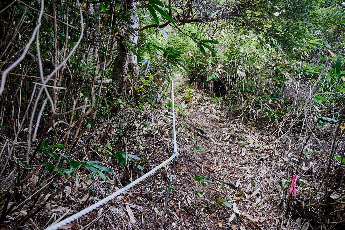 老ノ倉山-登りはロープが張ってある