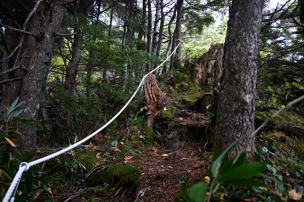 老ノ倉山-高い段差を登っていく