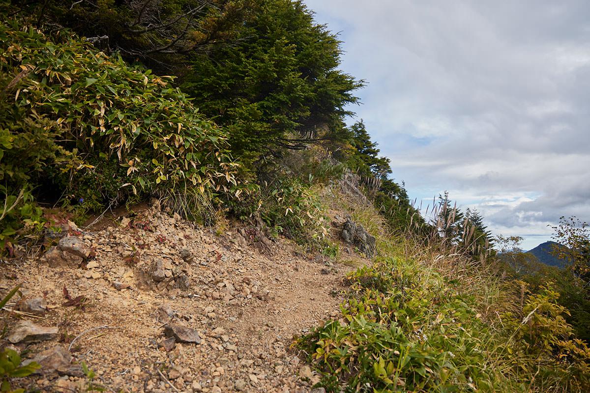 老ノ倉山-木の無い斜面をトラバース