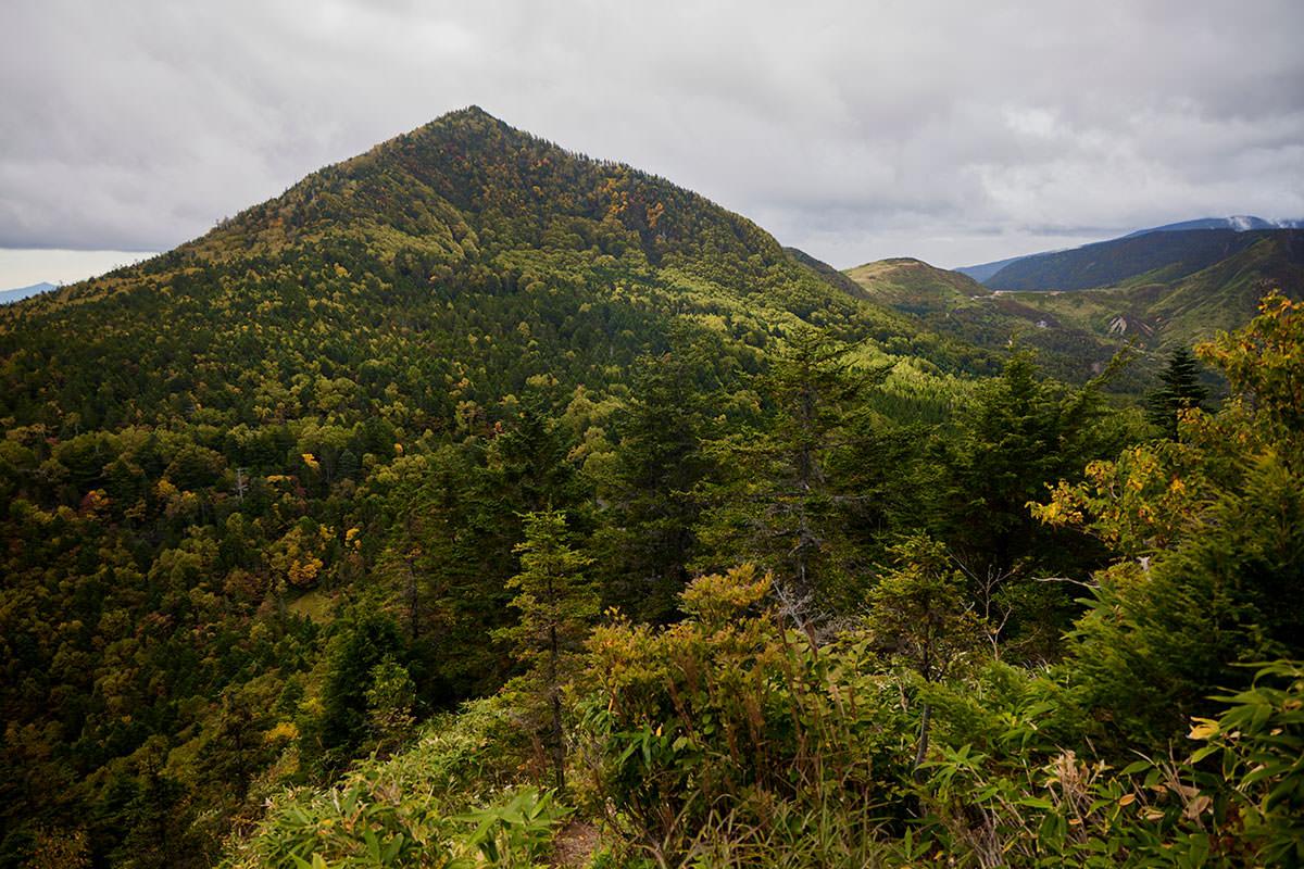 老ノ倉山-御飯岳と毛無峠がよく見える