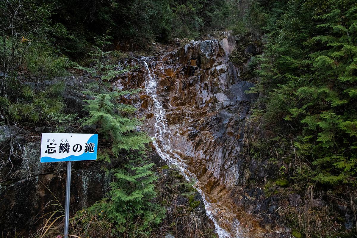 林道を歩くと滝が見られる