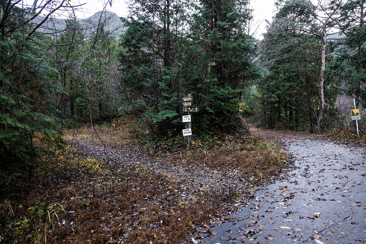 ここでいったん林道は終了